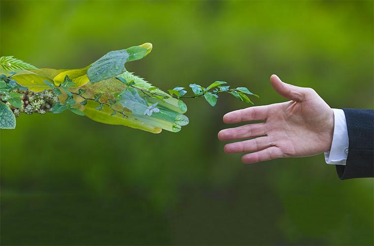 sustainability-webinars